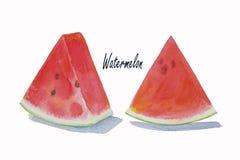 Sommerwassermelone geschnitten lokalisiert stockfoto