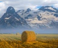 Sommerweizenfeld nach einer Ernte und einem Gebirgsrücken Stockfotografie