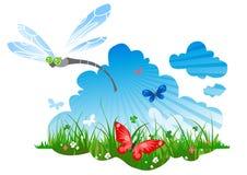 Sommerwiese mit einer Libelle Stockfotografie