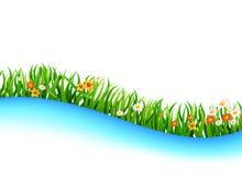 Sommerwiesenlandschaft Stockbilder