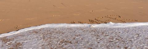 Sommerwort geschrieben in den Strand Stockfotografie