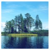Sommerzeit auf einem See in Ost-Norwegen Stockbilder