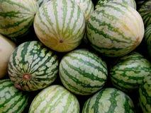Sommerzeit und Wassermelone Lizenzfreie Stockfotografie