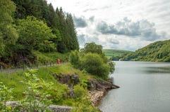 Sommerzeitwald- und -gebirgsseelandschaft im Elantal von Wales Stockfotos