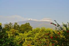 Sommet du mont Etna, Sicile Photo stock