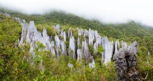 Sommets de chaux au parc national de mulu de gunung Image libre de droits