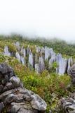 Sommets de chaux au parc national de mulu de gunung Images libres de droits