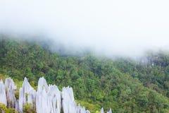 Sommets de chaux au parc national de mulu de gunung Photo libre de droits
