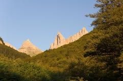 Sommets de Pyrénées au-dessus de la forêt Images libres de droits