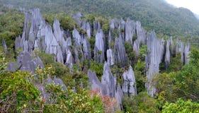 Sommets, Gunung Mulu, Bornéo, Malaisie images libres de droits