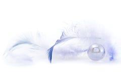 Sommige donkerblauwe veren royalty-vrije stock afbeelding