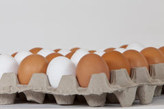 Sommige eieren Stock Afbeelding