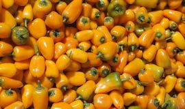 Sommige kleine peper bij straatmarkt Royalty-vrije Stock Foto