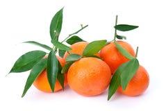 Sommige verse mandarines met bladeren royalty-vrije stock foto