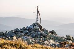 Sommità della collina con il ramo dell'erba, del blockfield e di albero Immagine Stock