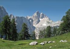 Sommità di Jalovec nelle alpi di Julian Immagine Stock