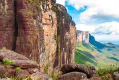 Sommità di Tepui del Roraima, Gran saban, Venezuela Fotografia Stock Libera da Diritti