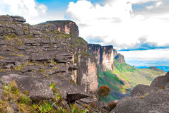 Sommità di Tepui del Roraima, Gran Sabana, Venezuela Fotografie Stock Libere da Diritti