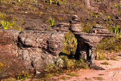 Sommità di Tepui del Roraima, Gran Sabana, Venezuela Fotografie Stock