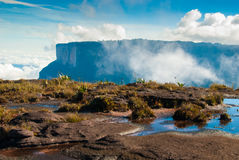 Sommità di Tepui del Roraima, Gran Sabana, Venezuela Fotografia Stock Libera da Diritti