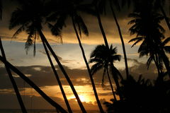 Somoan Sonnenuntergang Lizenzfreies Stockbild