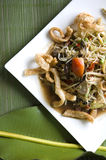 Somtam on white plate. Spicy papaya salad somtam on white plate stock photography