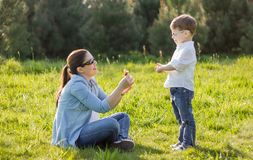 Son giving bouquet of flowers to mother in field. Happy cute son giving a bouquet of flowers to his mother in sunny field Royalty Free Stock Images
