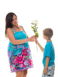 Son giving flowers to his pregnant mother. Isolated on white Royalty Free Stock Photo