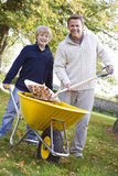 Son helping father to collect leaves. In wheelbarrow Stock Photo