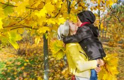 The son kisses mom in the autumn park among the falling leaves. Horizontal portrait Stock Images
