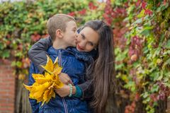 Son kissing mother among autumn. Outdoor Royalty Free Stock Photos