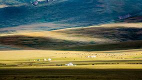 Son-Kul Lake pastures. Picture during my trip around the Kyrgyzstan royalty free stock photo