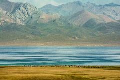 Son-Kul Lake Stock Photo