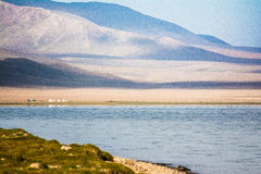 Son-Kul Lake. Picture during my trip around the South of Kyrgyzstan Royalty Free Stock Photography