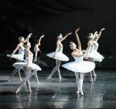 Son Ojta navré est revenu au lac swan de tribu-ballet de cygne Image stock