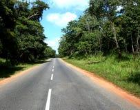 Son un long chemin sanglant ! ! ! Image libre de droits