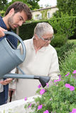 Son watering the flowers. Young men watering the flowers Royalty Free Stock Photo