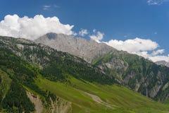 Sonamarg山风景在夏天, Sonamarg,查谟克什米尔, 免版税库存图片
