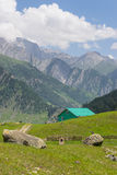 Sonamarg landscape, Jammu Kashmir. India Stock Photography