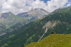 Sonamarg mountain landscape in summer, Srinagar, India Stock Photography
