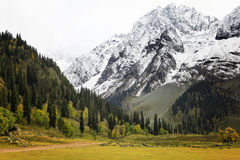 Sonamarg View Kashmir India. View from Sonamarg Kashmir India royalty free stock images