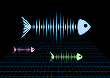 Sonar fishes Stock Photography