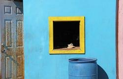 Sondern Sie gelben Fensterrahmen Tritonshornseeoberteil-Blauhintergrund aus Stockfotografie