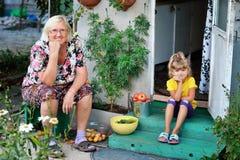 Sondottern med hans farmor samlade en skörd av tomater, royaltyfri bild