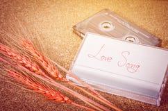 Sone d'amour avec la bande de cassette sonore Photo libre de droits
