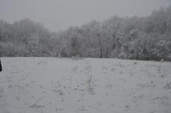 sonen för snowing för mum för grönt omslag för fader för lag för blått lock för basker går den röda vinter Royaltyfria Bilder