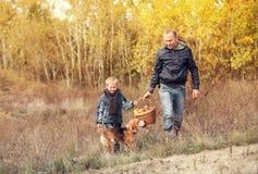 Sonen med fadern bär den fulla korgen av champinjoner i höstskog Arkivfoto