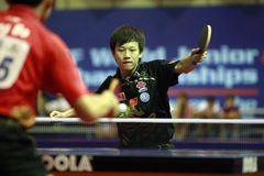Song Hongyuan. ( China ) , world champion  during the world junior table tennis championships in cartagena de indios.Winner of the 4 events Royalty Free Stock Photos