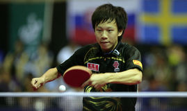 Song Hongyuan. ( China ) , world champion  during the world junior table tennis championships in cartagena de indios.Winner of the 4 events Stock Photo