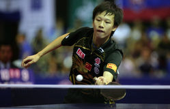 Song Hongyuan. ( China ) , world champion  during the world junior table tennis championships in cartagena de indios Royalty Free Stock Image